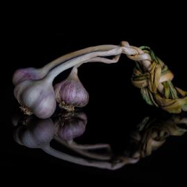 Reflected Garlic  by Trevor Bond - Food & Drink Fruits & Vegetables ( garlic, food, still life, vegetable )