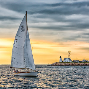 Sailboat Returning Home 2164.jpg