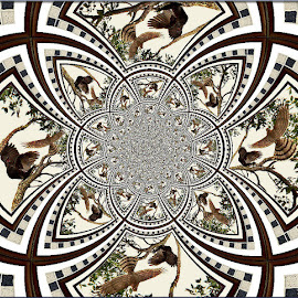 The Crow & The Coopers Hawk by Yvonne Collins - Digital Art Abstract