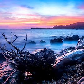 DAO DAU by Lâm Tặc - Landscapes Beaches