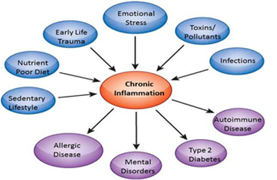 Chronic Inflammation Causes