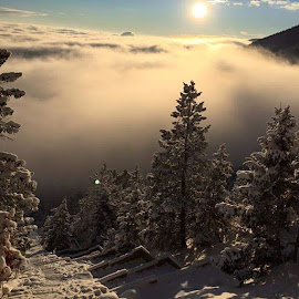This morning at the top of the Manitou Incline. What a beautiful spot.,, by Chuck Ruffin - Instagram & Mobile Android ( ilovemountains, manitousprings, manitouincline )