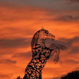 Titans horse by Razvan Ice - Buildings & Architecture Statues & Monuments ( red, sky, stautes, sunset, titans horse, horse, monument )