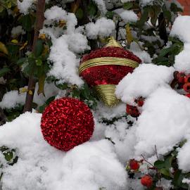 christmas ball on the snow by LADOCKi Elvira - Public Holidays Christmas ( glowing decorations, holiday, christmas decorations, santa claus, glowing balls, christmas, christmas tree, decorations, christmas balls, merry christmas )