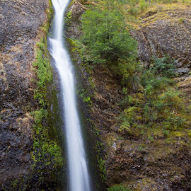 Horsetail Falls by Greg Head - Novices Only Landscapes ( water, oregon, green, waterfall, long exposure, rocks )
