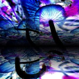 Gill Galaxy by Virginia Howerton - Digital Art Abstract