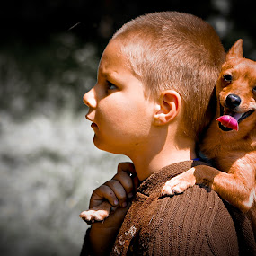 by Alex D.  Veriga - Animals - Dogs Portraits