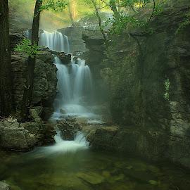 EMERALD POOL  by Dana Johnson - Landscapes Waterscapes ( waterfalls, waterscape, falls, cascades, forest, landscape )