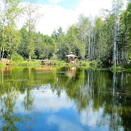 A lake at sunny day by Svetlana Saenkova - City,  Street & Park  City Parks ( sunny day, water reflection, sunny, lake, summer )