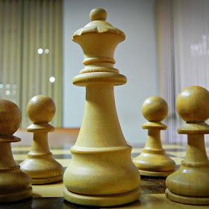 chess-21.JPG
