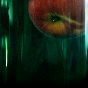 Apple by Marina Jambrec - Artistic Objects Other Objects ( jambrec, marina, photography )