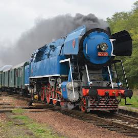 Czech blue steam 477.043 Parrot by Vita Kalivoda - Transportation Trains ( locomotive, steam train, train, transportation, steam )