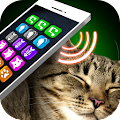 Game Lullaby Cat Simulator apk for kindle fire