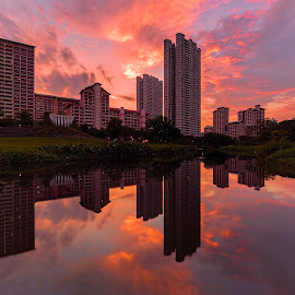 by Gordon Koh - Buildings & Architecture Homes ( pond, reflection, city, asia, city park, bishan, singapore, modern, urban, symmetry, sunset, cityscape, modern city, park )
