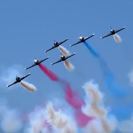 Patriots Jet Team by Michele Whitlow - Transportation Airplanes ( miramar, airplanes, u.s. navy, air show,  )