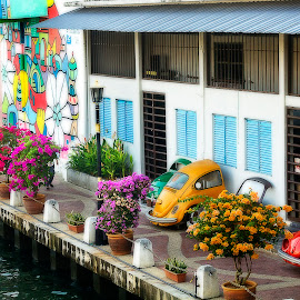 My Front Door by Steven De Siow - City,  Street & Park  Neighborhoods ( front door, river view, melaka, neighborhood, malaysia )