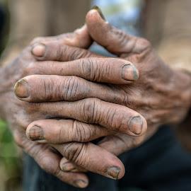 HARDWORKING HANDS by Eduardo Seastres - People Body Parts ( #hands, #hardworking_hands, #hardworking, #macro,  )