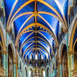 Great Blue Ceiling by Keith Sutherland - Buildings & Architecture Places of Worship ( interior, notre dame, church, ottawa )