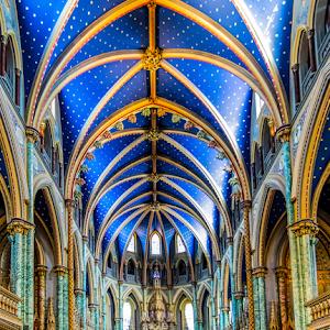 Notre Dame Ceiling 26 01 18.jpg