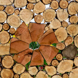 Wood stacked in an interesting pattern by Debbie Quick - Artistic Objects Other Objects ( stacked, debbie quick, outdoor photography, pattern, abstract, stacked wood, fire wood, debs creative images, new york, outdoors, firewood, wood, hudson valley, poughkeepsie,  )