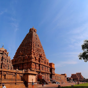 Tanjavur Brahadeeswara Temple by Muthu Kumar - Buildings & Architecture Public & Historical ( sky, tree, blue, green, tanjavur, periya kovil, south-west, peruvudayar, gopuram, brahadeeswara temple )