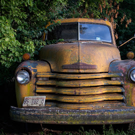 by Adam Favre - Transportation Automobiles ( carly, old truck, cement truck, conner, cooper )