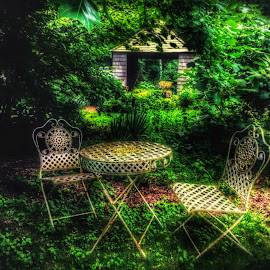 Lush Life by Gerry Schmitt - Artistic Objects Still Life ( shed, secluded, trees, backyard, garden )