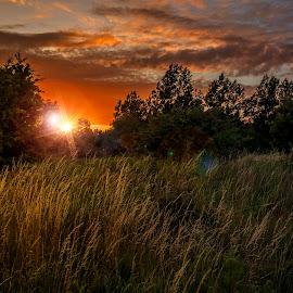 by Kennet Brandt - Landscapes Sunsets & Sunrises