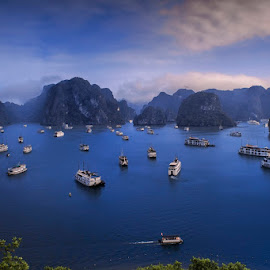 Halong Bay by Mac Evanz - Landscapes Caves & Formations