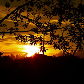 sunset behind the tree branch by Agustina Djafar - Novices Only Objects & Still Life