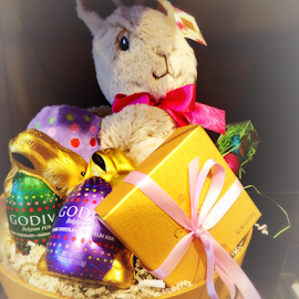 Godiva Easter Bunny Basket by Cheryl Beaudoin - Public Holidays Easter ( stuffed animals, godiva, chocolate, easter, bunny, basket,  )