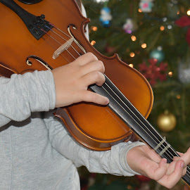 Violin Lessons  by Lorraine D.  Heaney - People Musicians & Entertainers