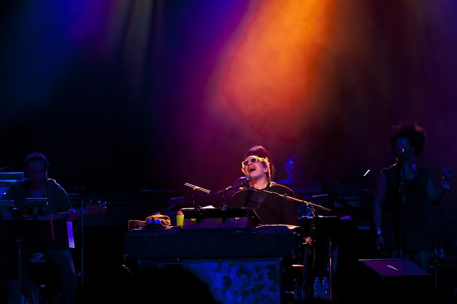 Donald Fagen with Steely Dan by Dave Link - People Musicians & Entertainers ( concerts, music, musicians, concert, piano, donaldfagen, steely dan, steelydan, donald fagen )