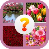 4 pictures 1 word APK for Lenovo