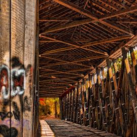 Switzer Covered Bridge by Eugene Linzy - Buildings & Architecture Bridges & Suspended Structures ( interior, old, wooden, covered bridge, graffiti, bridge )