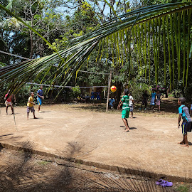 Jungle volley by Alejo Cedeno - Sports & Fitness Other Sports ( colorful, volleyball, havingfun, sports, kids, travel, fun, documenting, playing, panama, nature, jungle, outdoor, islands, islagobernadora )