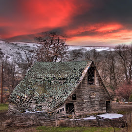 Green Roof barn by Eric Demattos - Buildings & Architecture Decaying & Abandoned ( red sky, barn, sunset, eric demattos, green roof, decayed )