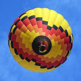 Hot Air Balloon by Dawn Hoehn Hagler - Transportation Other ( balloon fiesta, hot air balloon, albuquerque, transportation, balloon, new mexico )