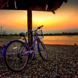 by Jasminka  Tomasevic - Transportation Bicycles