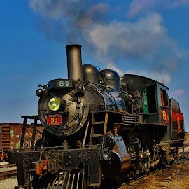 Steamy  by Anna Tripodi - Transportation Trains ( cool, railroad, train, tracks, steam,  )