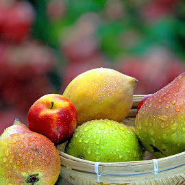 ready to pick by Asif Bora - Food & Drink Fruits & Vegetables (  )