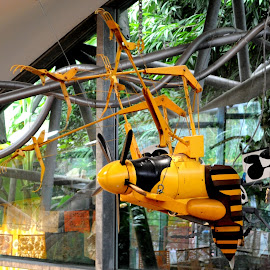 Five Blade Wasp by DJ Cockburn - Artistic Objects Toys ( eden project, britain, bee, cornwall, steampunk, yellow, tourism, mechanical, building, interior, tourist, wasp, uk, insect, architecture, england, art, glass, propeller, st austell, eden kitchen, metal, sculpture, west country, structure, suspended, botanic gardens, window, hanging )
