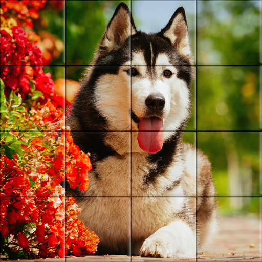 Dog Puzzle (game)