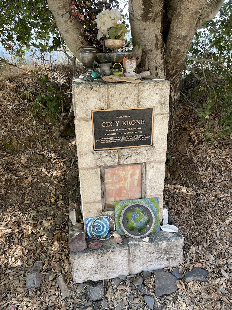 IN MEMORY OF CECY KRONE DECEMBER 17, 1956 - SEPTEMBER 4, 1999 A BICYCLIST KILLED BY A DRUNK DRIVER LOVING DAUGHTER, SISTER AND AUNT, AVID CYCLIST, OCCUPATIONAL THERAPIST WORKING WITH LOCAL CHILDREN, ...