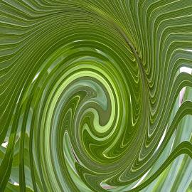 Fern Twirl by Gwen Paton - Abstract Patterns ( plant, fern, green, florida )