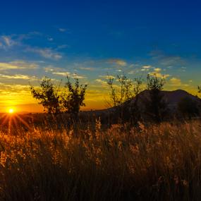by Cristobal Garciaferro Rubio - Landscapes Prairies, Meadows & Fields