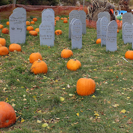 He Lived so Well... by Lenora Popa - Public Holidays Halloween ( holiday, tombstone, fall, pumpkins, halloween )