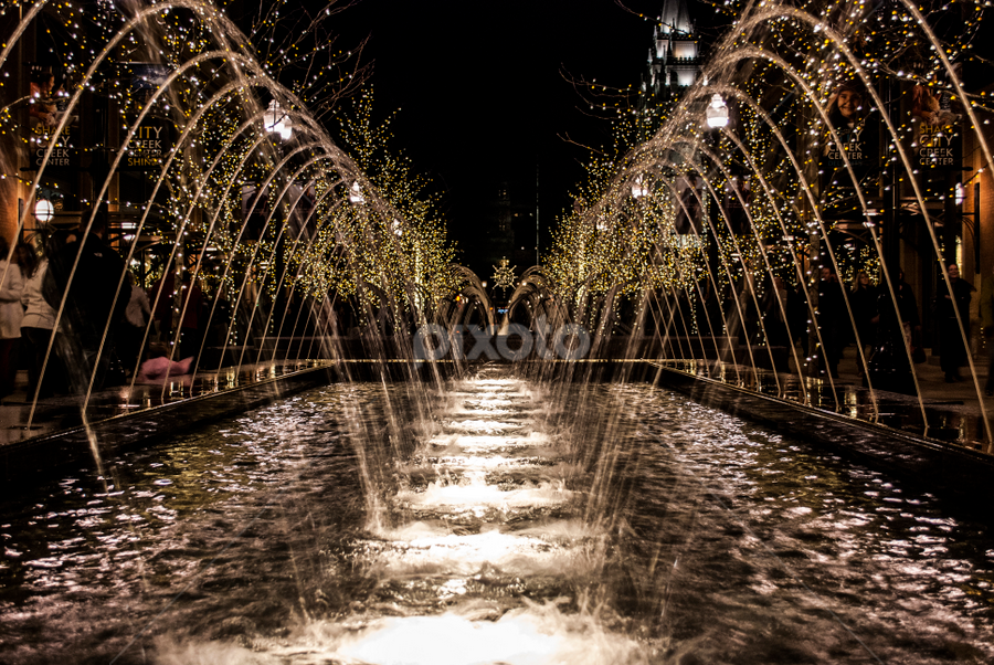 Water and lights by Kyley Hansen - Public Holidays Christmas ( lights, water, december, winter, christmas,  )