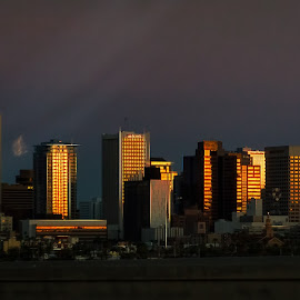 Phoenix Downtown at Sunset by Dave Lipchen - City,  Street & Park  Skylines ( sunset, phoenix, phoenix downtown at sunset )