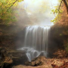 A SENSE OF CALM by Dana Johnson - Landscapes Waterscapes ( waterfalls, fog, calmness, waterscape, cascade, fall, falls, morning, landscape )